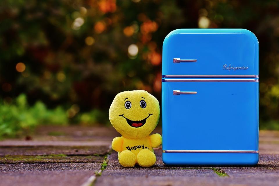 Les mini-réfrigérateurs sont-ils uniquement destinés aux boissons ?